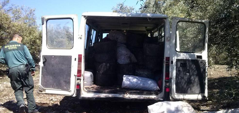 'Cazado' en Torredonjimeno robando 2.500 kilos de aceitunas
