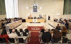 El pleno aprueba incluir un estudio de viabilidad para un 'bypass' en la licitación de la obra de El Puche