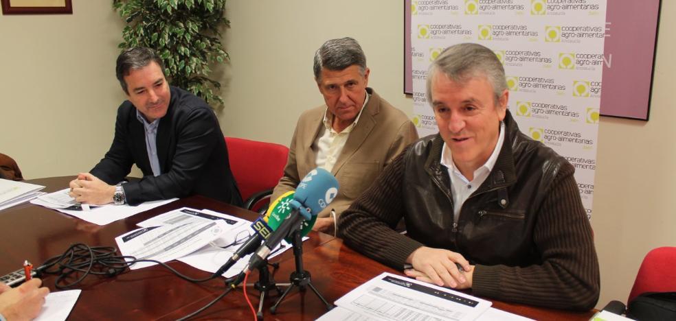 Cooperativas Agro-alimentarias habla de un inicio de campaña «muy positivo»