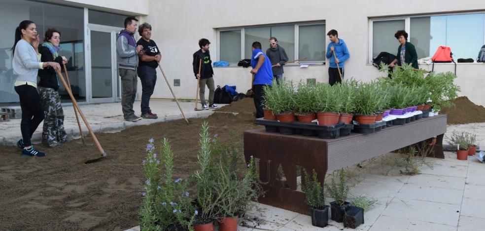 La UAL cierra el Día Internacional del Voluntariado creando un nuevo jardín