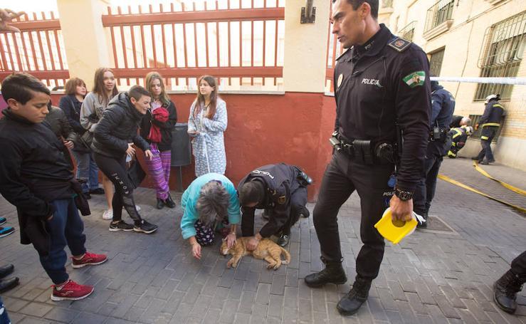 Un incendio en Granada obliga al desalojo de dos viviendas