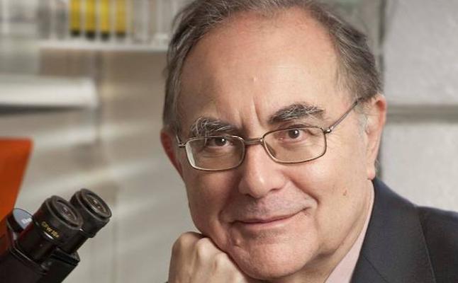 El catedrático de Granada Antonio Campos, elegido embajador de la medicina española
