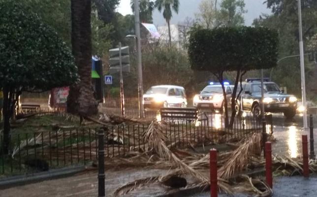 Aviso naranja hoy en Jaén por fuertes rachas de viento