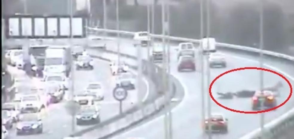 El vídeo de un burro y un motorista con el que la DGT alerta del peligro de conducir con lluvia