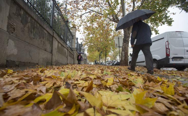 Granada vivió un 11 de diciembre lluvioso