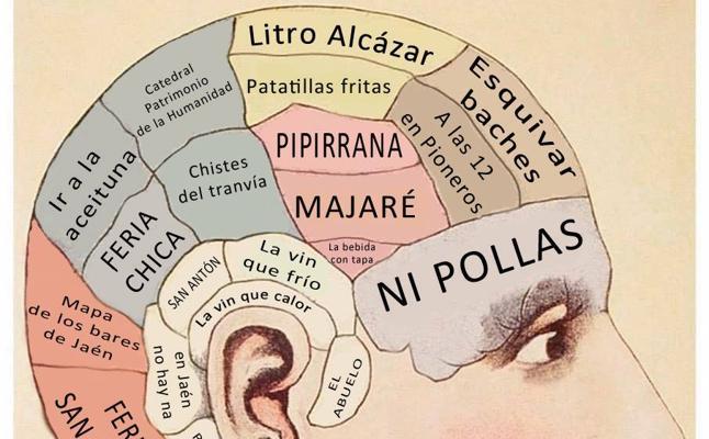 El meme sobre la 'anatomía de un jienense' que arrasa en la red