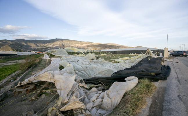 Así han quedado los invernaderos de Carchuna tras el viento huracanado