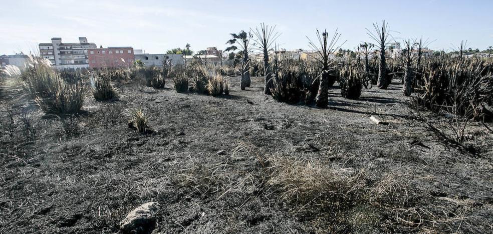 Motril limitará con un bando el lanzamiento de cohetes tras los tres incendios en Nochevieja