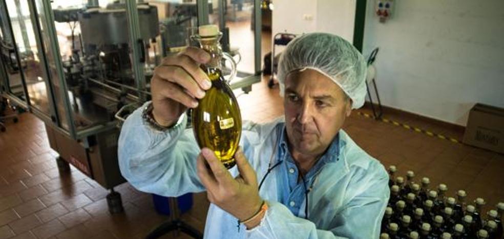 Diputación abre una convocatoria extraordinaria de ayudas a empresas