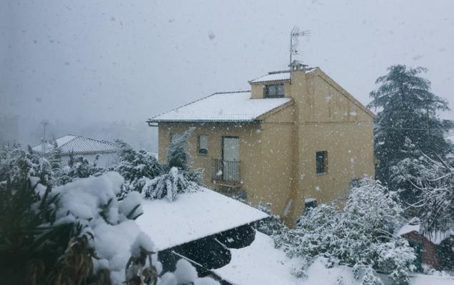 Los vídeos y fotos que los granadinos han hecho de la nevada