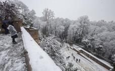 Los Reyes regalaron la estampa más navideña a Granada