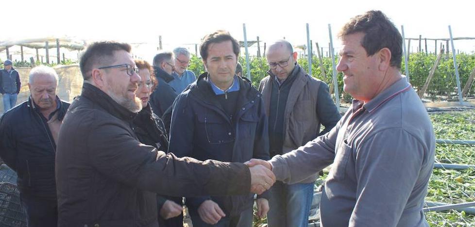 El consejero de Agricultura visita las zonas arrasadas por el tornado
