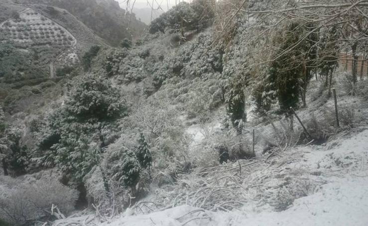 Imágenes para el recuerdo: nieve en la costa de Granada