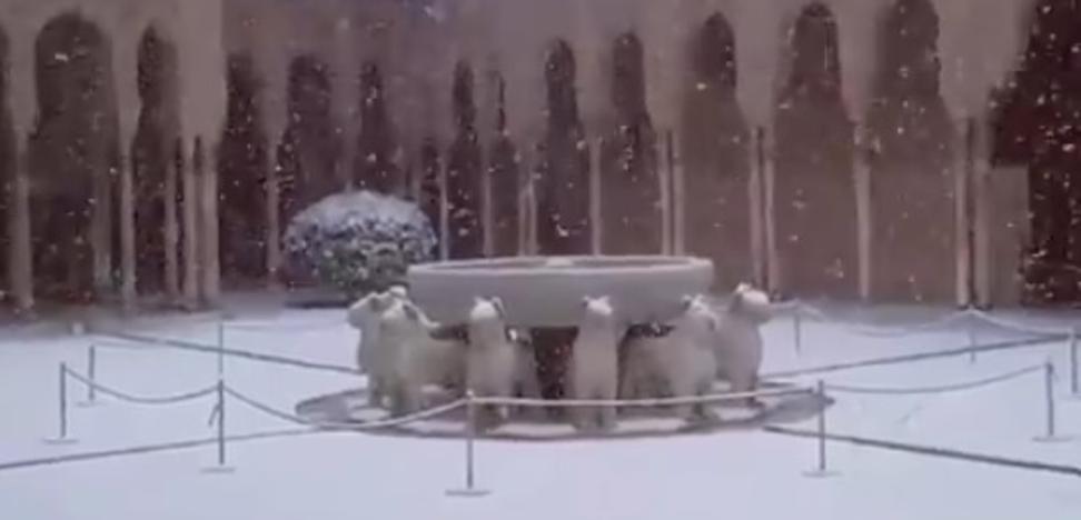 El bello vídeo de la nieve sobre el Patio de los Leones que ha dado la vuelta al mundo