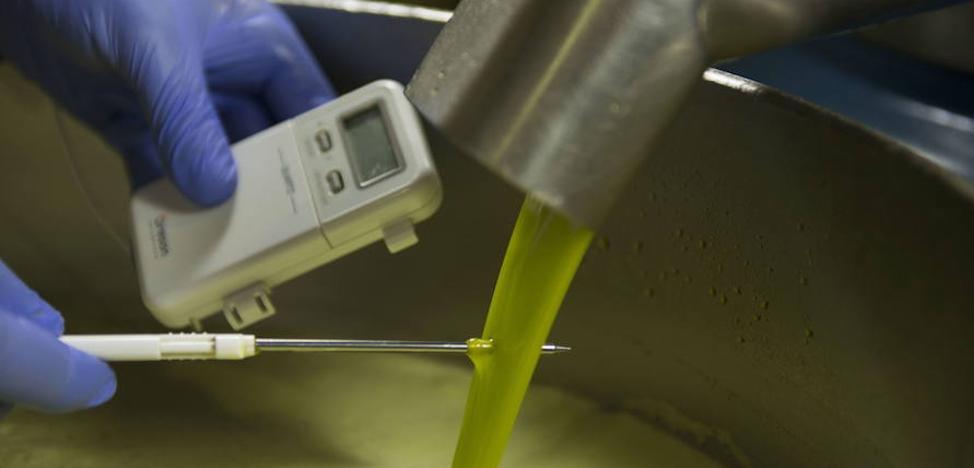 La Junta confía en que Jaén produzca 360.000 toneladas de aceite de oliva