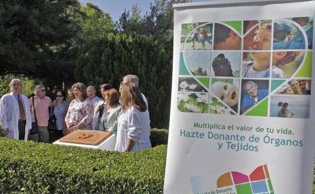 El Hospital de Linares registró dos donaciones de órganos durante el año pasado