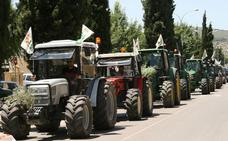 La Junta ha abonado 315 millones de euros de la PAC atendiendo al 95% de los beneficiarios de la provincia