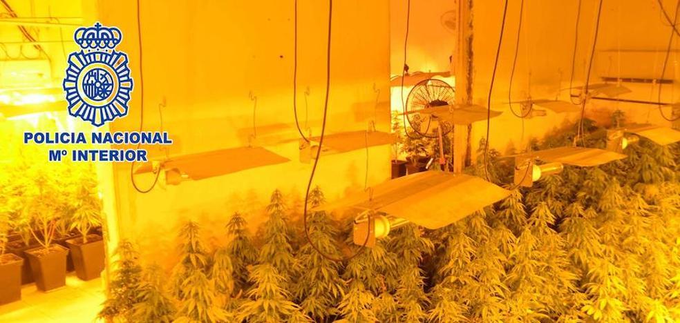 Golpe al tráfico de drogas en Almería al caer puntos de venta cerca de dos colegios
