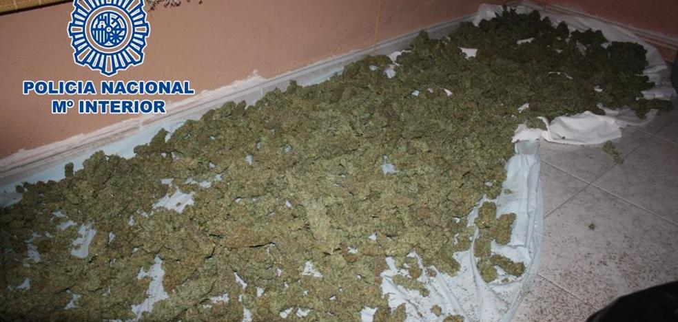 Tres detenidos por tener 33 kilos de cogollos de marihuana en una vivienda de Cenes de la Vega
