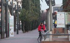 Granada, la ciudad de las alergias