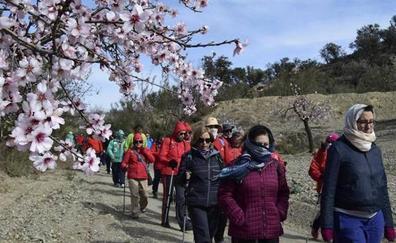 La bicicleta y el caballo se suman a las rutas del 'Almendro en Flor'