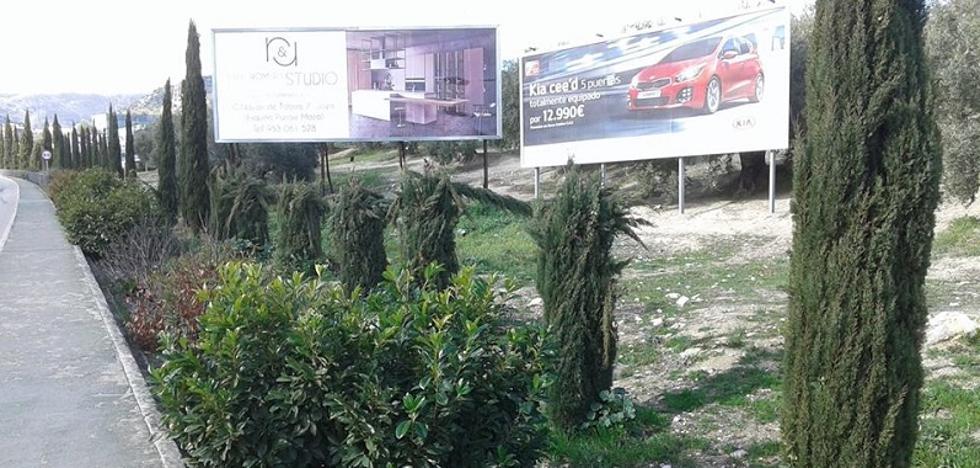 Talan árboles en Jaén sin permiso para que se vean sus vallas publicitarias