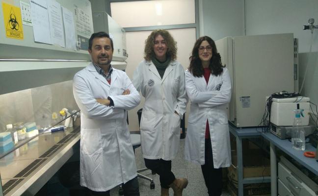 Investigadores de la UJA crean una nueva formulación para el cáncer de páncreas