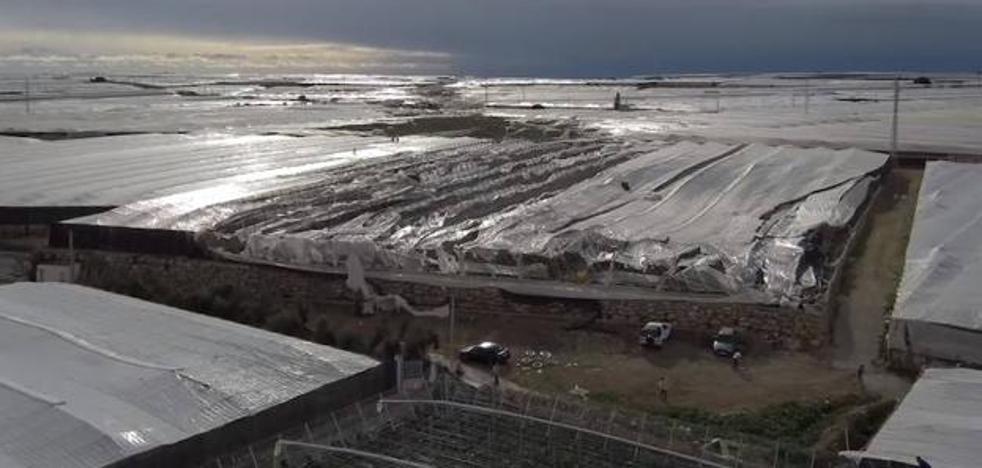 Abierto plazo para pedir ayudas por daños en agricultura en Almería