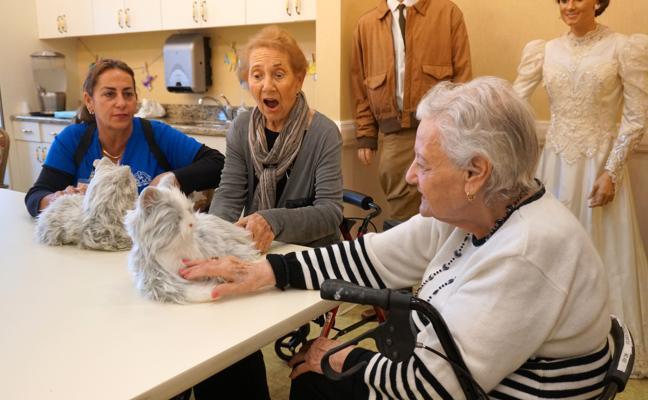 Un congreso internacional abordará en Jaén el reto de la vejez y la soledad