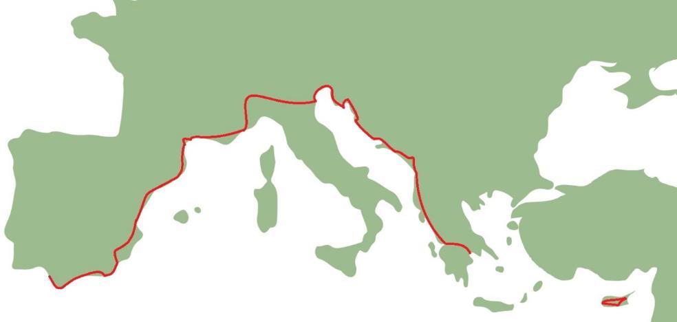 El otro Corredor Mediterráneo: un carril ciclista desde Almería y hasta Nicosia