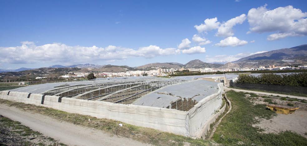 400 hectáreas de invernaderos ven peligrar las ayudas de la Junta por su situación alegal