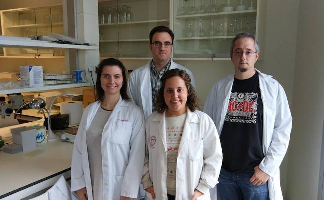 Un estudio de la UGR abre las puertas al desarrollo de analgésicos contra el dolor neuropático