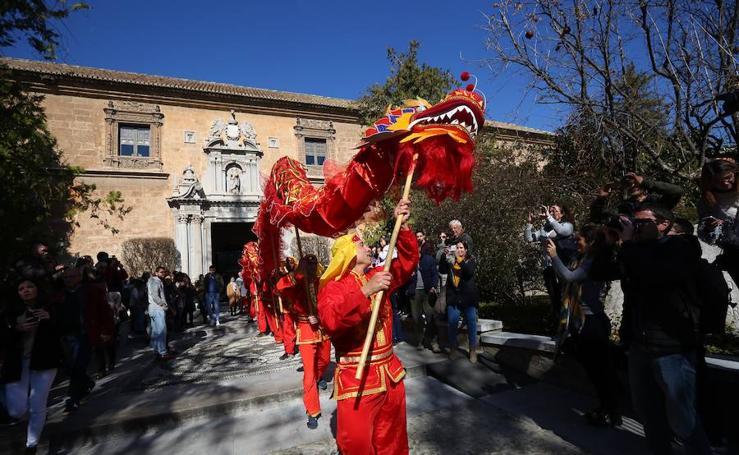 Las mejores imágenes del colorido pasacalles chino por Granada