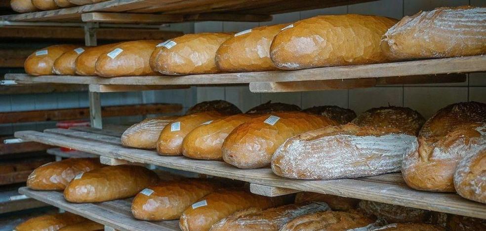 El tipo de pan que los expertos recomiendan eliminar de la dieta