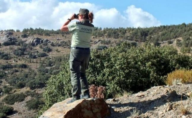 Un juez ordena el derribo de un chalé ilegal en el Parque de Cazorla y Segura