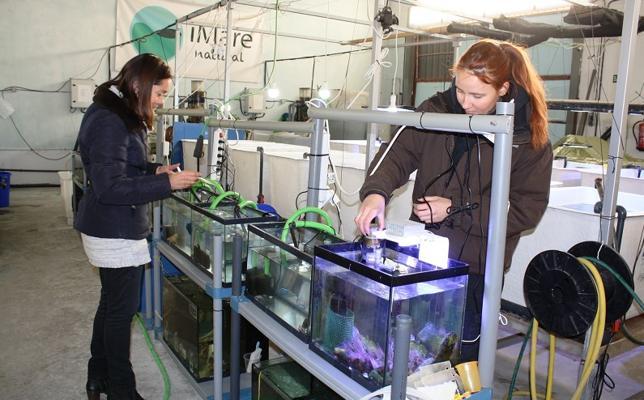 iMare Natural, ideas innovadoras incubadas en el CADE de Motril