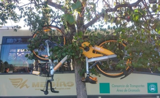 Las 3 medidas de oBike para frenar el vandalismo contra las bicis de alquiler tras lo ocurrido en Granada