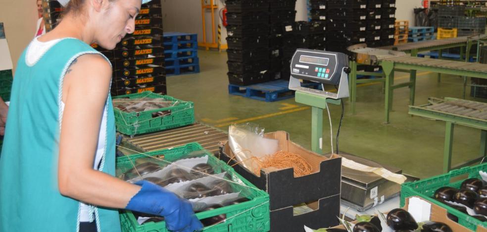 Las ventas agroalimentarias al exterior aumentan un 5,6%