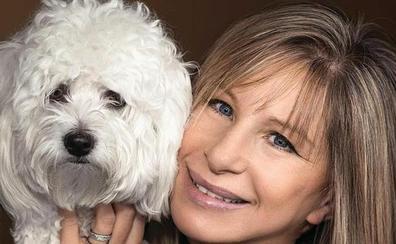 Barbra Streisand revela que tiene dos perros que son clones