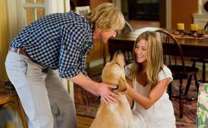 El vínculo entre un perro y su familia (humana)
