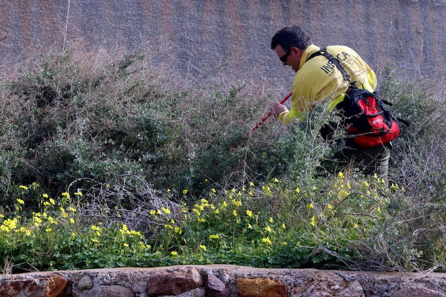 Más de 260 personas buscan una jornada más a Gabriel Cruz en Níjar