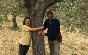 Adoptar naranjos y olivos en España está de moda. ¿Qué beneficios logras?