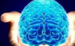 Descubren el 'tsunami' que se produce en el cerebro al morir