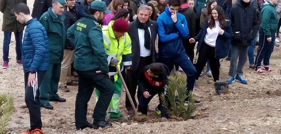 Repoblación forestal con el IES de Baeza