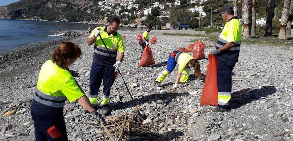 Retiran un millón de kilos de cañaveras de las playas sexitanas