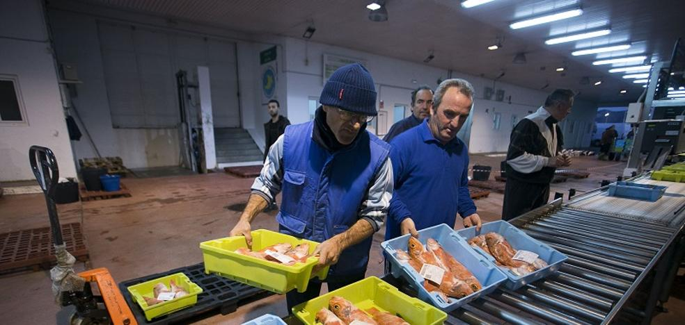 Pescadores de Motril temen desaparecer por una norma que les obligará a faenar menos