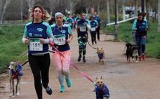 Más de 280 personas y sus perros corren en Granada para impulsar la adopción de mascotas
