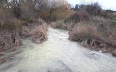 El día después del temporal revela importantes daños en caminos y explotaciones agrícolas de la Vega de Granada