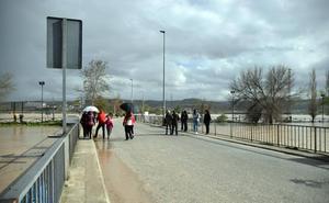 Diputación abre todas sus carreteras en 24 horas