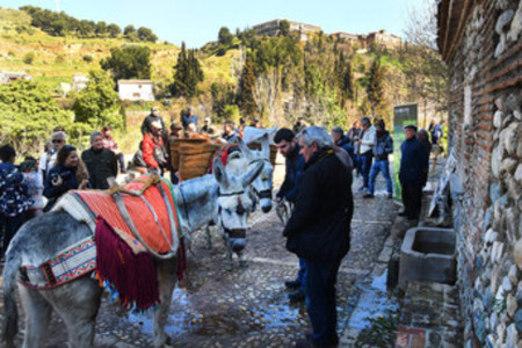 Los aguadores vuelen al Avellano